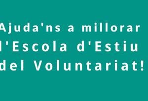Escola d'Estiu del Voluntariat 2017
