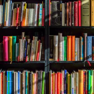 Monografies de la llei del voluntariat